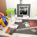 VI Aukcja Charytatywna BSO 2011. Przedmioty na licytację